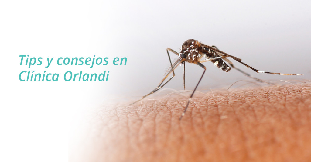 BannerFacebookMosquito_page-1024x535